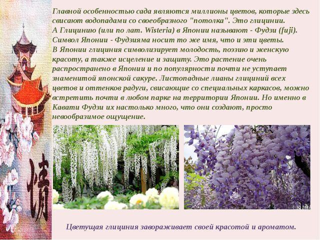 Главной особенностью сада являются миллионы цветов, которые здесь свисают вод...