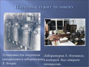 Установка для получения пенициллина в лаборатории Х. Флори. Лаборатория А. Фл