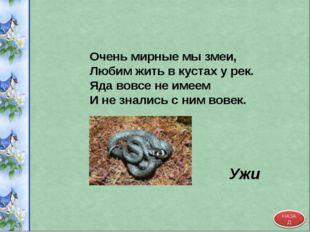 Очень мирные мы змеи, Любим жить в кустах у рек. Яда вовсе не имеем И не знал