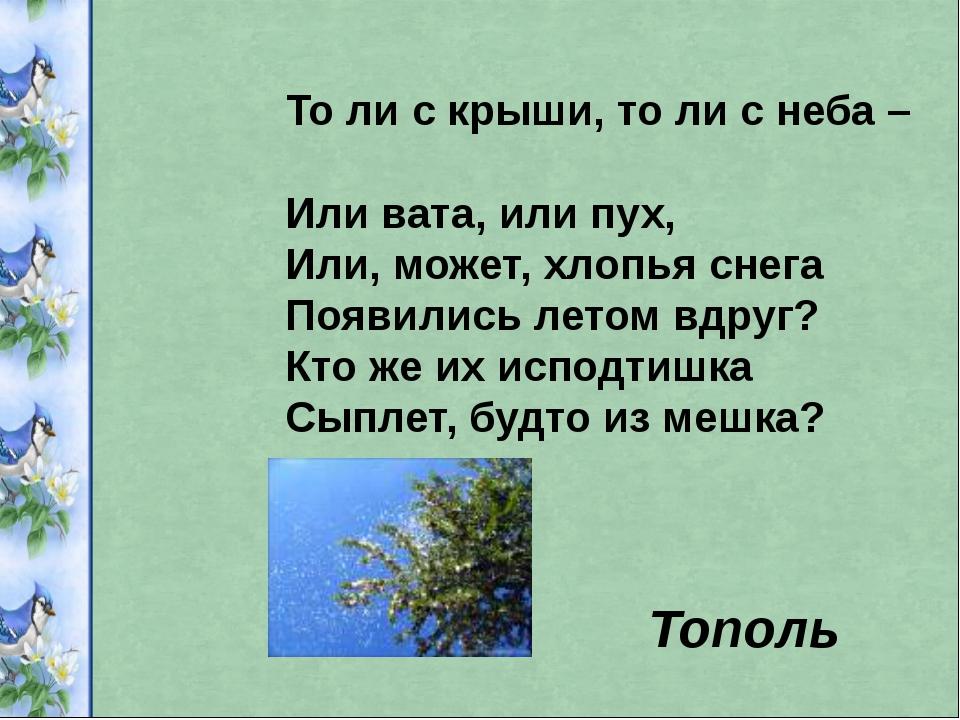 То ли с крыши, то ли с неба – Или вата, или пух, Или, может, хлопья снега Поя...