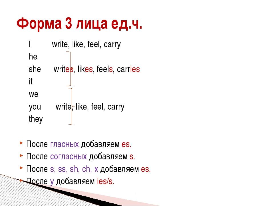 I write, like, feel, carry he she writes, likes, feels, carries it w...