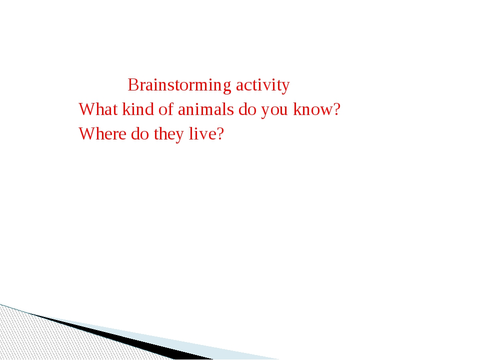 Brainstorming activity What kind of animals do you know? Where do they live?