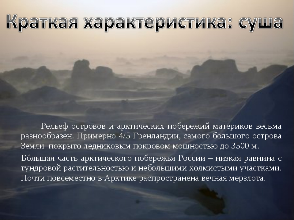 Рельеф островов и арктических побережий материков весьма разнообразен. Пpиме...
