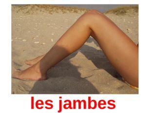 les jambes