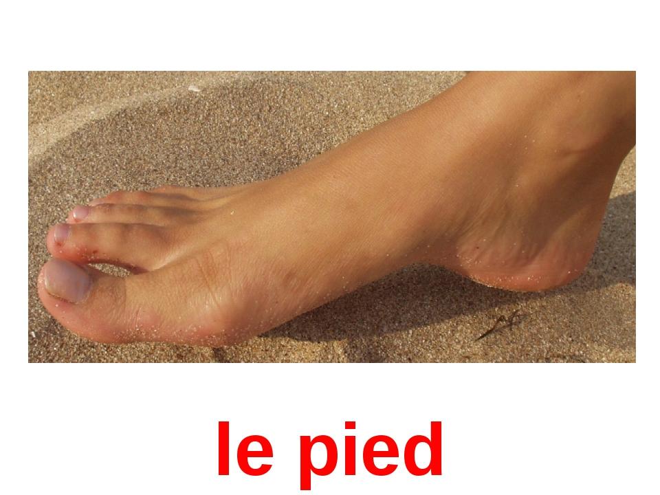 le pied
