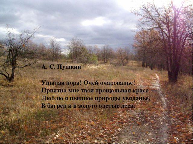 А. С. Пушкин Унылая пора! Очей очарованье! Приятна мне твоя прощальная крас...