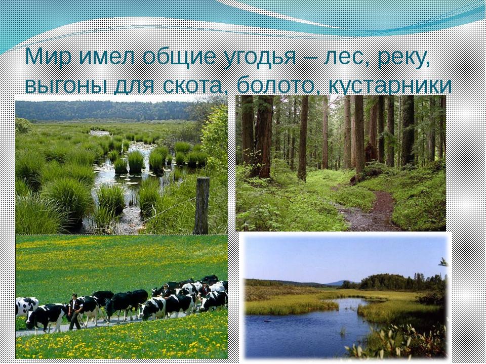 Мир имел общие угодья – лес, реку, выгоны для скота, болото, кустарники