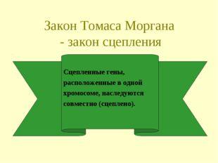 Закон Томаса Моргана - закон сцепления Сцепленные гены, расположенные в одной