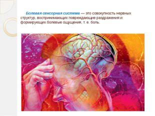 Болевая сенсорная система— это совокупность нервных структур, воспринимаю