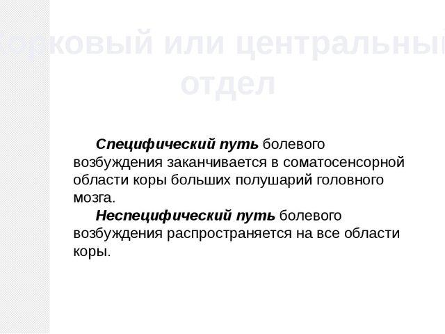 Корковый или центральный отдел Специфический путьболевого возбуждения закан...