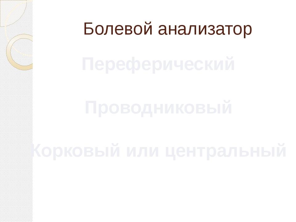 Болевой анализатор Переферический Проводниковый Корковый или центральный