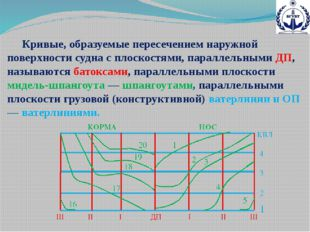 Кривые, образуемые пересечением наружной поверхности судна с плоскостями, па