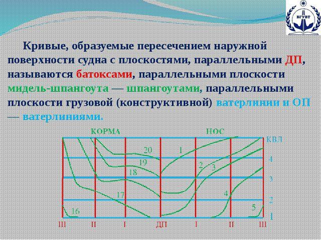 Кривые, образуемые пересечением наружной поверхности судна с плоскостями, па...
