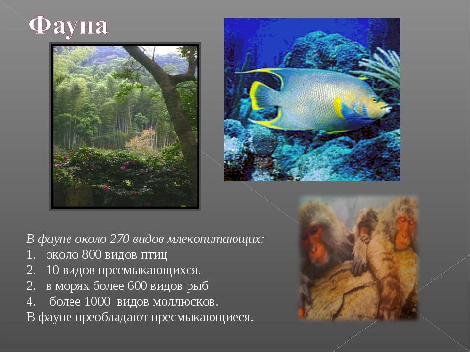 В фауне около 270 видов млекопитающих: около 800 видов птиц 10 видов пресмык...