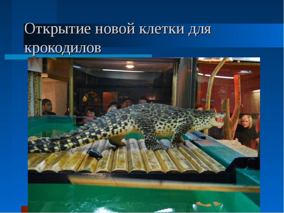 Открытие новой клетки для крокодилов
