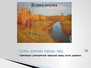 Гармонирует, разноцветный, природой, наряд, кустах, деревьях. Гулять, осеннем