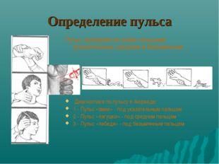 Определение пульса Пульс проверяется тремя пальцами: указательным, средним и