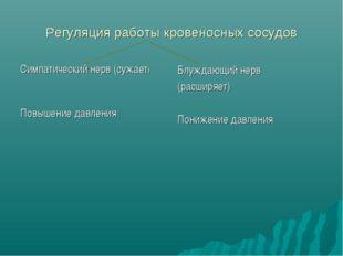 Регуляция работы кровеносных сосудов Симпатический нерв (сужает) Повышение да