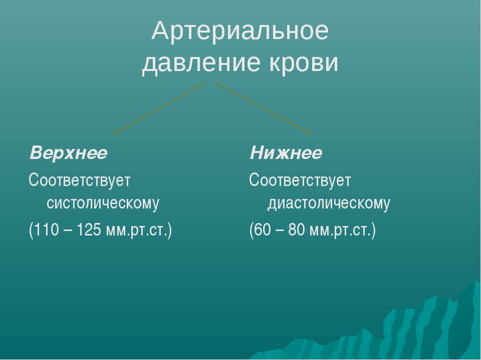 Артериальное давление крови Верхнее Соответствует систолическому (110 – 125 м...