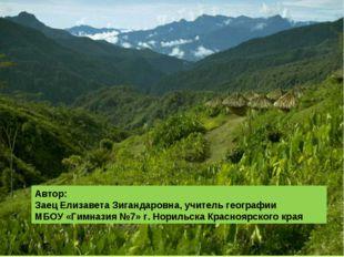 Автор: Заец Елизавета Зигандаровна, учитель географии МБОУ «Гимназия №7» г. Н
