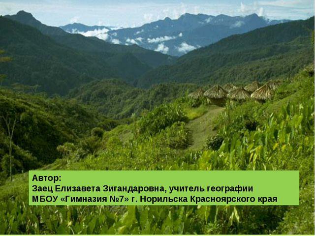 Автор: Заец Елизавета Зигандаровна, учитель географии МБОУ «Гимназия №7» г. Н...
