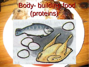 Body- building food (proteins)