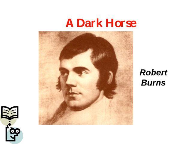 Robert Burns A Dark Horse