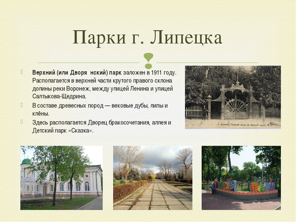 Парки г. Липецка Верхний (или Дворя́нский) парк заложен в 1911 году. Располаг...
