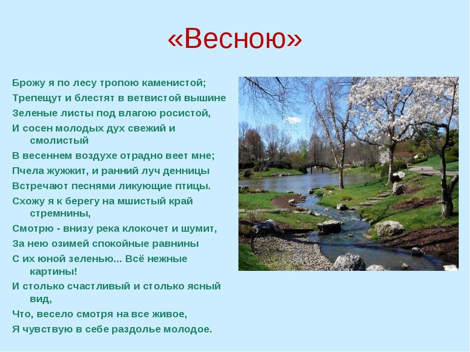 «Весною» Брожу я по лесу тропою каменистой; Трепещут и блестят в ветвистой вы...