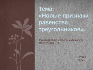 Руководитель: учитель математики Прилепская Н.Ф. г.Гусев 2014 г. Тема: «Новые