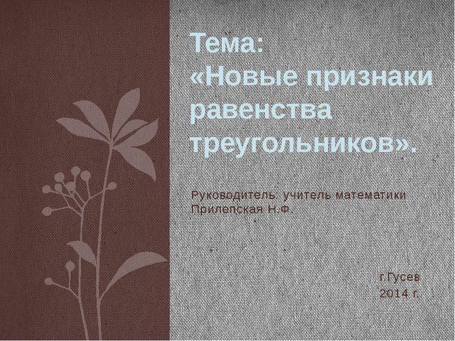 Руководитель: учитель математики Прилепская Н.Ф. г.Гусев 2014 г. Тема: «Новые...