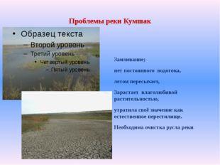 Проблемы реки Кумшак Заиливание; нет постоянного водотока, летом пересыхает,