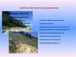 Проблемы Цимлянского водохранилища Понижение уровня воды, обмеление Разрушен