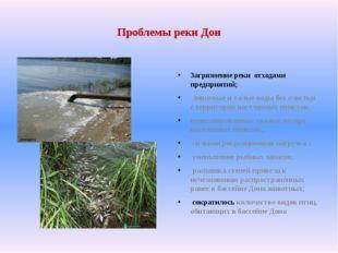 Проблемы реки Дон Загрязнение реки отходами предприятий; ливневые и талые вод