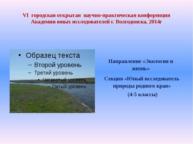 VI городская открытая научно-практическая конференция Академии юных исследова...