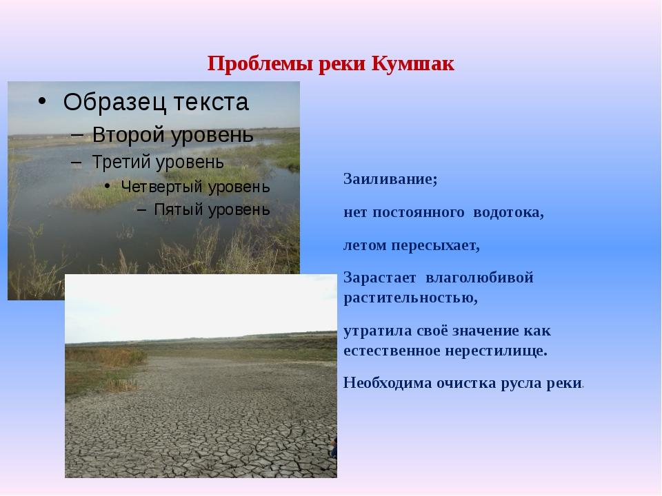 Проблемы реки Кумшак Заиливание; нет постоянного водотока, летом пересыхает,...