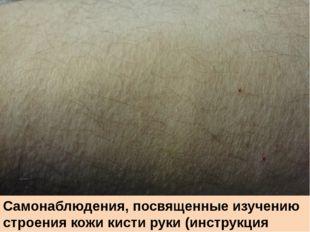 Самонаблюдения, посвященные изучению строения кожи кисти руки (инструкция с.2