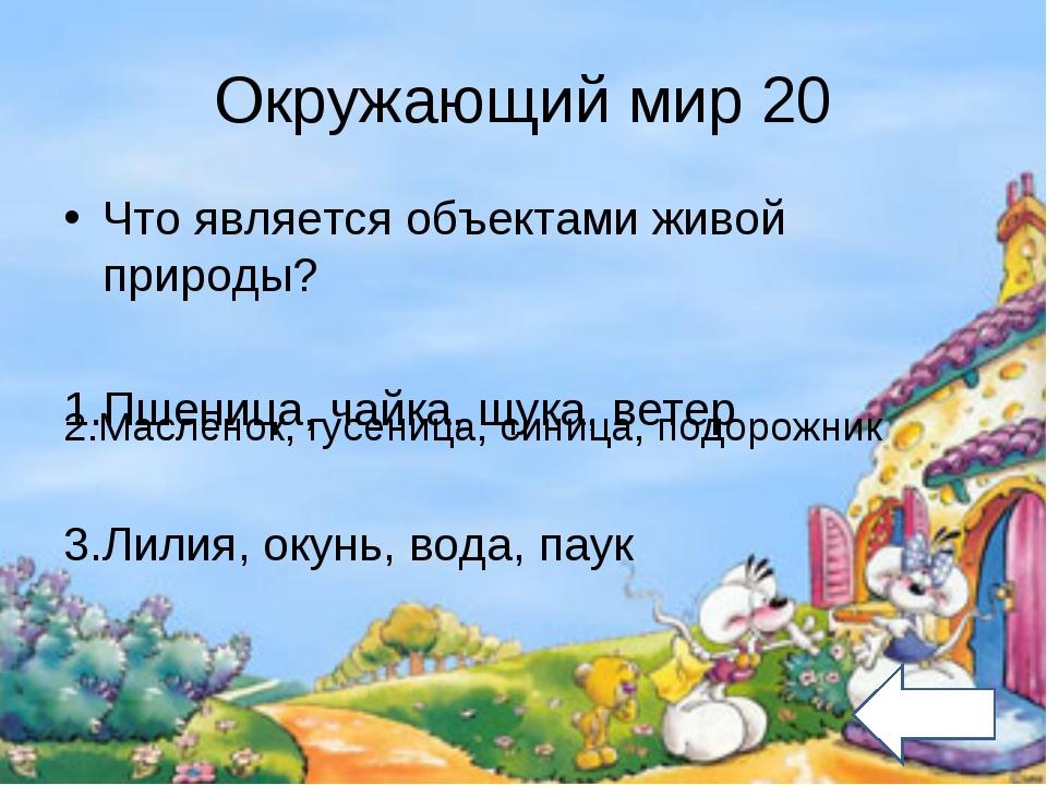 Окружающий мир 20 Что является объектами живой природы? 1.Пшеница, чайка, щук...