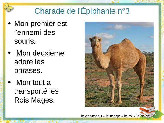 Charade de l'Épiphanie n°6 Mon premier est un prénom masculin. Mon deuxième s...