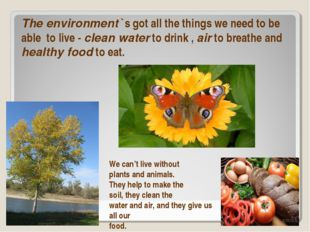The environment `s got all the things we need to be able to live - clean wate