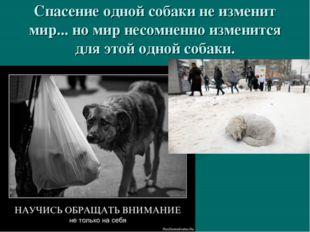 Спасение одной собаки не изменит мир... но мир несомненно изменится для этой