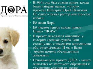 В1994 году был создан приют, когда были найдены щенки, которых приютил Шамари