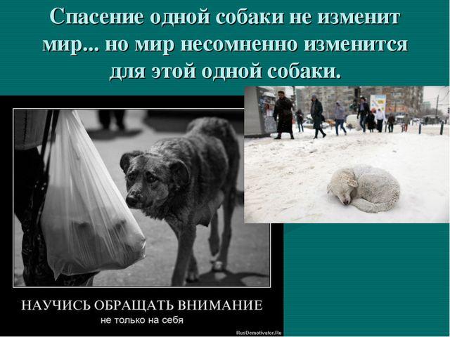 Спасение одной собаки не изменит мир... но мир несомненно изменится для этой...