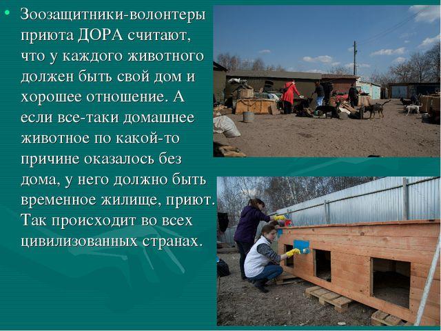 Зоозащитники-волонтеры приюта ДОРА считают, что у каждого животного должен бы...