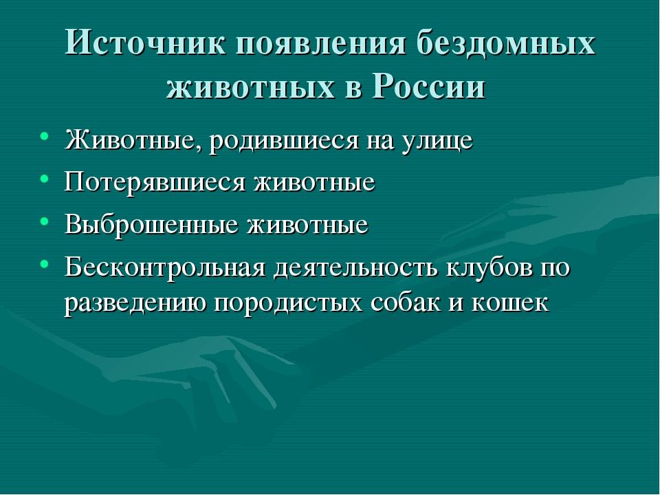 Источник появления бездомных животных в России Животные, родившиеся на улице...