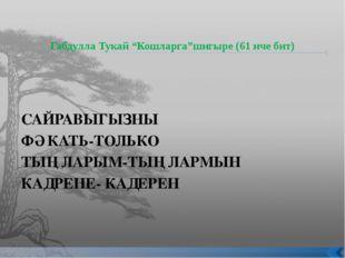 """Габдулла Тукай """"Кошларга""""шигыре (61 нче бит) САЙРАВЫГЫЗНЫ ФӘКАТЬ-ТОЛЬКО ТЫҢЛ"""