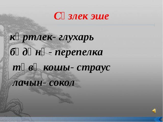 Сүзлек эше көртлек- глухарь бүдәнә- перепелка тәвә кошы- страус лачын- сокол