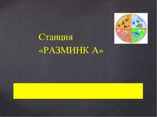 Станция «РАЗМИНК А»