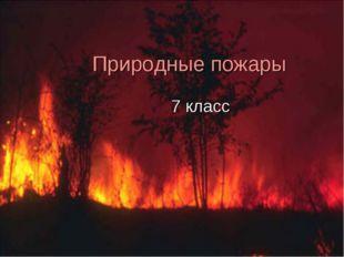 Природные пожары 7 класс
