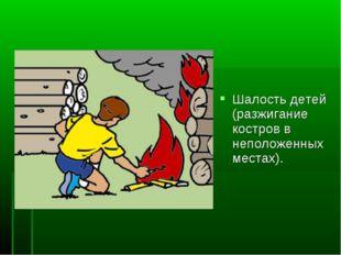 Шалость детей (разжигание костров в неположенных местах).